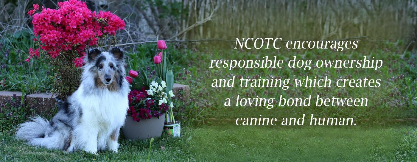 NCOTC Mission
